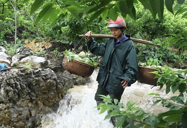 [Photo] Lạng Sơn được mùa na, sản lượng ước đạt hơn 30.000 tấn  - Ảnh 2.