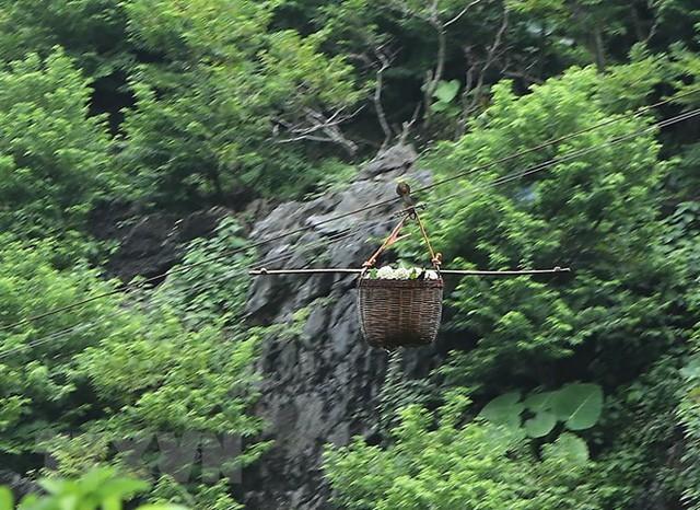 [Photo] Lạng Sơn được mùa na, sản lượng ước đạt hơn 30.000 tấn  - Ảnh 7.