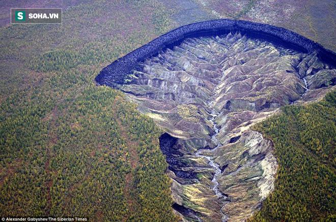 Phát hiện hóa thạch ngựa còn nguyên vẹn sau 40.000 năm tại hố tử thần ở Siberia - Ảnh 1.