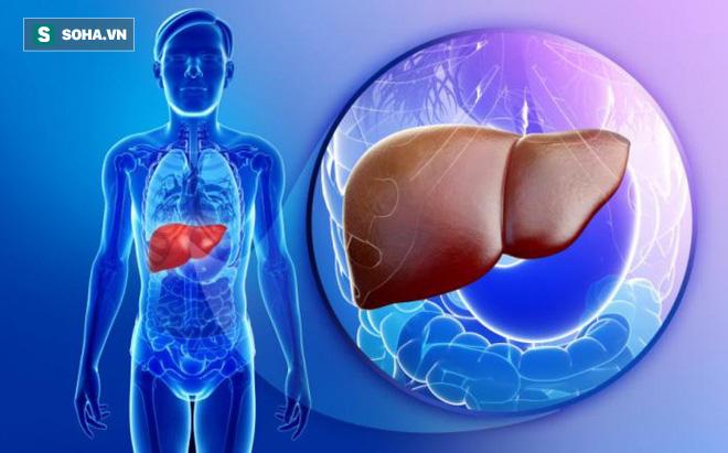 6 dấu hiệu cảnh báo khi bệnh gan tiến triển thành ung thư: Phát hiện sớm là rất quan trọng - Ảnh 1.