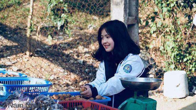 Bán hoa quả ở Hà Giang, cô gái 15 tuổi khiến chàng trai đòi làm rể, dân mạng nhận ra người quen cũ - Ảnh 1.