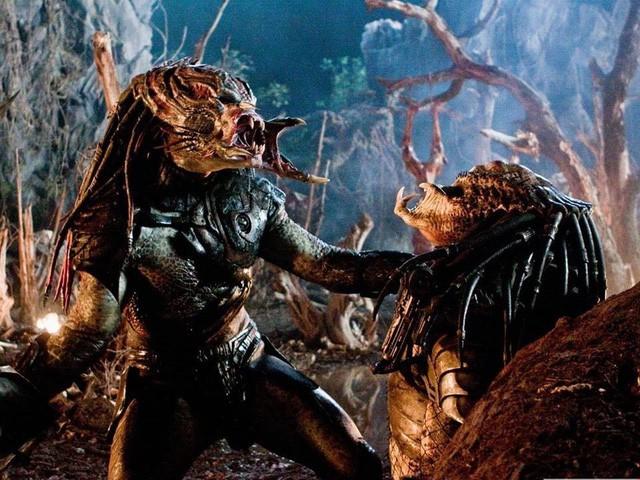 Giải mã nguồn gốc và sức mạnh của Quái Thú Vô Hình The Predator, chủng tộc hùng mạnh nhất nhì vũ trụ - Ảnh 4.