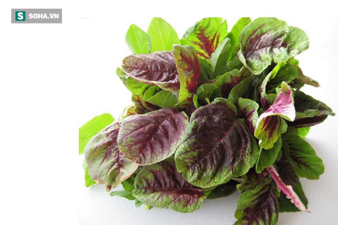 4 loại rau quả là vua thải độc và trẻ hóa: Bạn nên ăn để loại bỏ độc tố ra khỏi cơ thể - Ảnh 1.