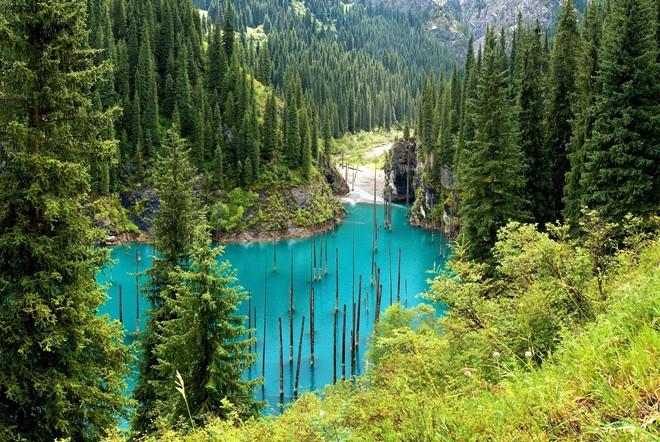 Kaindy: Hồ nước kỳ ảo nhất thế giới - Ảnh 1.