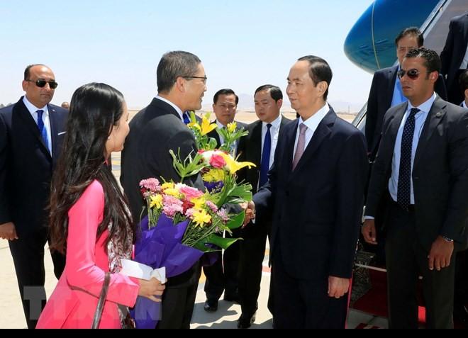 Chuyến thăm nước ngoài cuối cùng của Chủ tịch nước Trần Đại Quang - Ảnh 10.