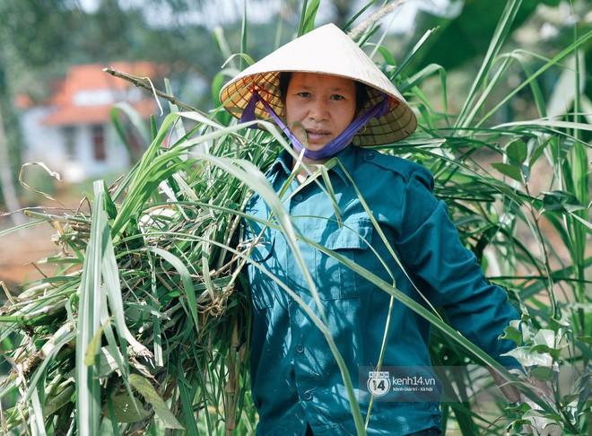 Không phải gì đặc biệt, đây mới là thứ mà thủ môn Bùi Tiến Dũng nghĩ đẹp nhất thế giới Việt Nam - Ảnh 3.