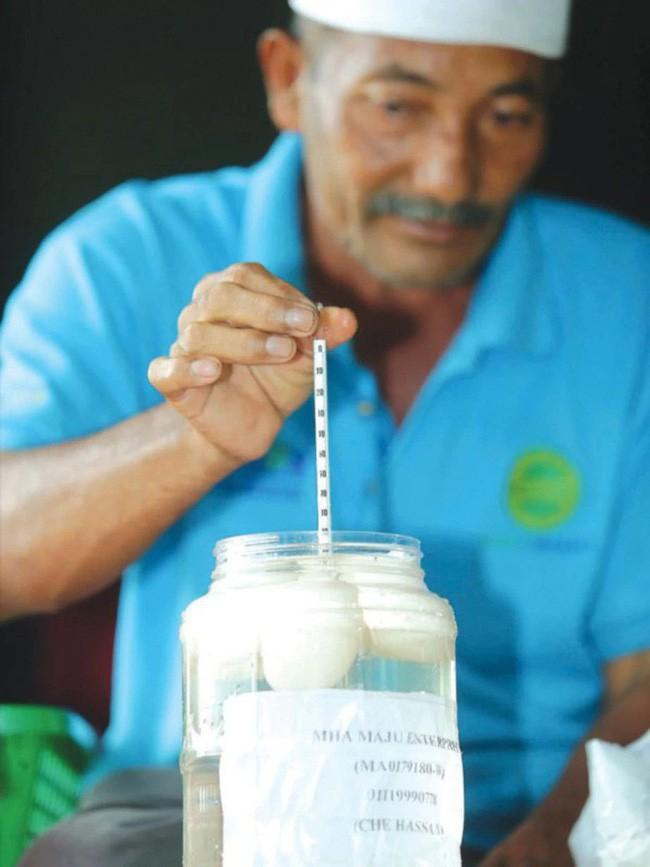 Góc làm giàu không khó: Khởi nghiệp từ 50 con vịt, cặp vợ chồng kiếm gần 70 triệu đồng mỗi tháng nhờ bán trứng vịt - Ảnh 3.