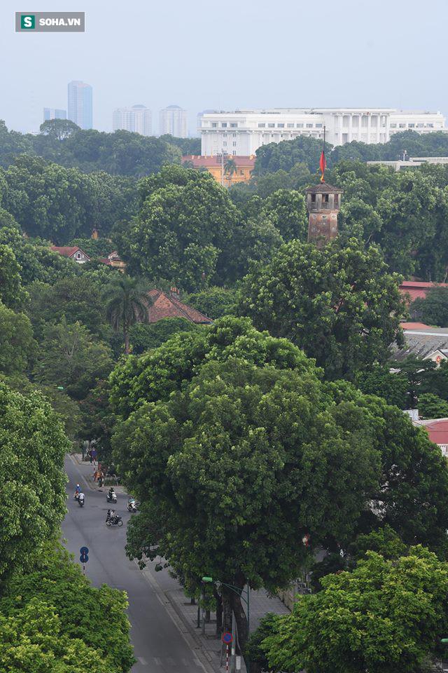Khắp nơi treo cờ rủ Quốc tang Chủ tịch nước Trần Đại Quang - Ảnh 27.