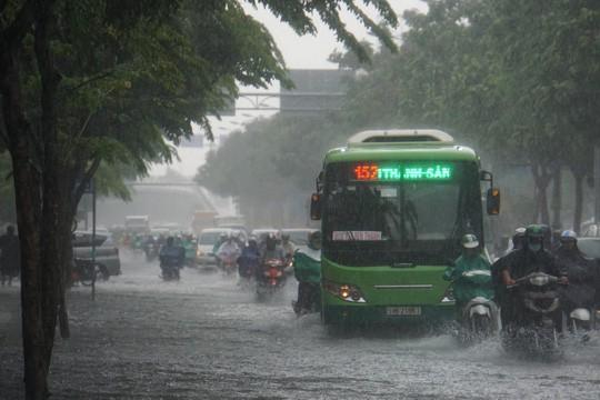 Mưa nhỏ cũng khiến đường vào sân bay Tân Sơn Nhất ngập lênh láng - Ảnh 1.