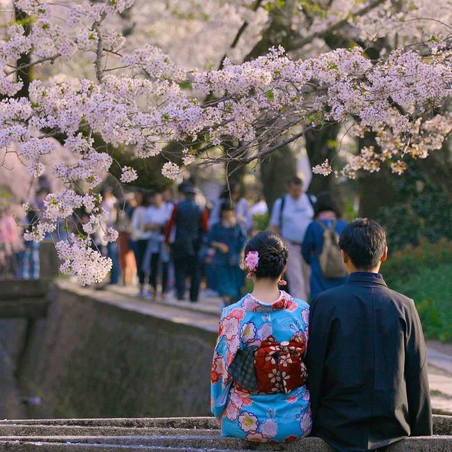 Người Nhật đã dạy cả thế giới về cuộc sống cân bằng, đơn giản và hạnh phúc qua 11 điều sau đây - Ảnh 11.