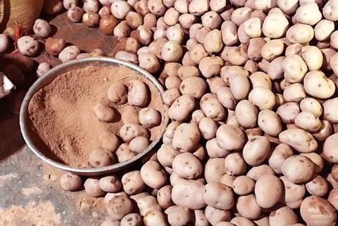 Trộn đất đỏ vào khoai tây Trung Quốc, bán giá cao gấp 3-4 lần - Ảnh 4.