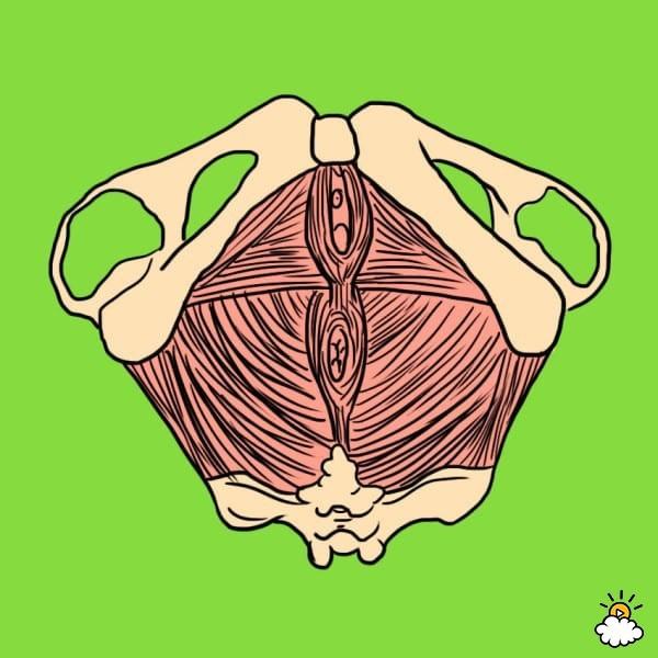 Một thói quen tế nhị và mất vệ sinh khi tắm được chứng minh tốt cho đời sống tình dục - Ảnh 2.