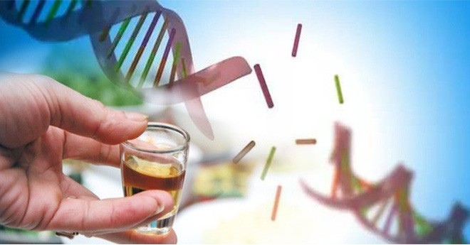 Chuyên gia Đông y chỉ ra sự thật về việc sử dụng hoa đại ngâm rượu giúp giảm cân - Ảnh 1.