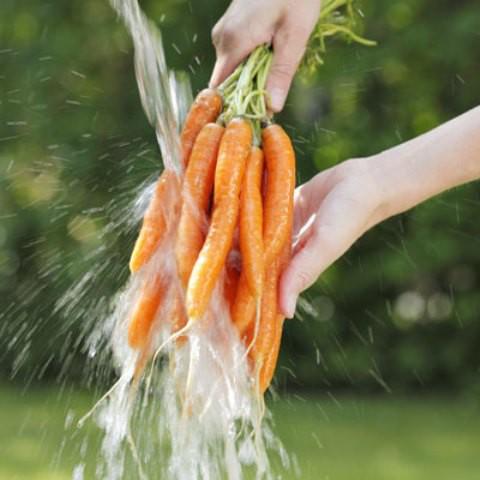 19 sai lầm nghiêm trọng khi xào nấu, ăn rau xanh - Ảnh 1.