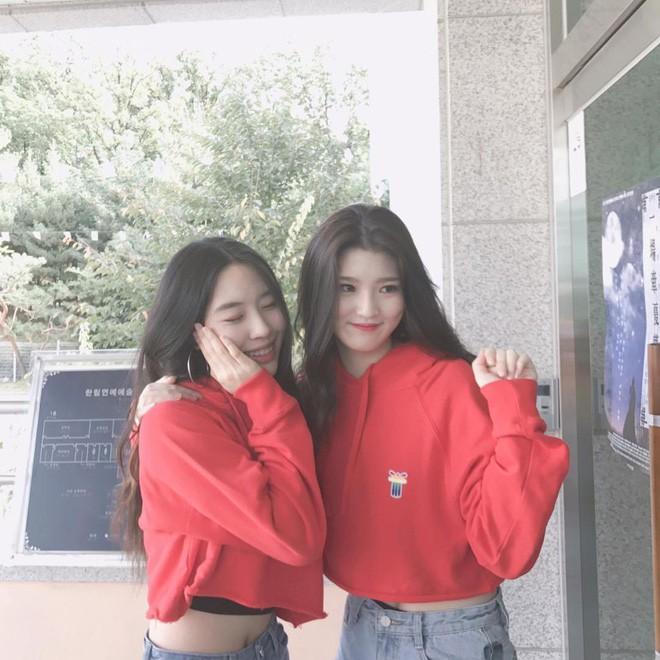 Đây là lò đào tạo idol có nhiều nữ sinh xinh đẹp nhất Hàn Quốc - Ảnh 14.