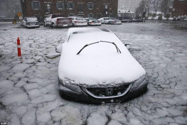 Nước Mỹ tê cứng trong 'bom bão tuyết': Người chết cóng, cá mập sốc nhiệt và hàng loạt ô tô 'biến mất' - Ảnh 16.