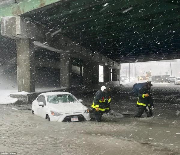 Nước Mỹ tê cứng trong 'bom bão tuyết': Người chết cóng, cá mập sốc nhiệt và hàng loạt ô tô 'biến mất' - Ảnh 20.