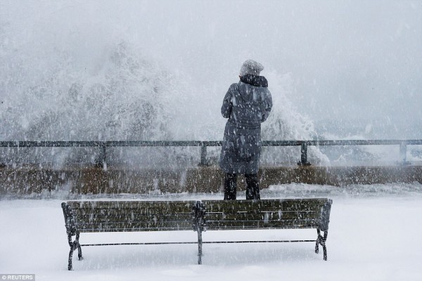 Nước Mỹ tê cứng trong 'bom bão tuyết': Người chết cóng, cá mập sốc nhiệt và hàng loạt ô tô 'biến mất' - Ảnh 3.