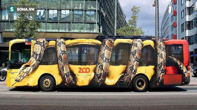 Đã từng tồn tại loài rắn dài ngang chiếc xe bus, mới nghĩ đến đã thấy run - Ảnh 2.
