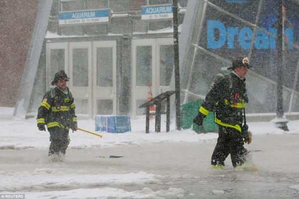 Nước Mỹ tê cứng trong 'bom bão tuyết': Người chết cóng, cá mập sốc nhiệt và hàng loạt ô tô 'biến mất' - Ảnh 21.