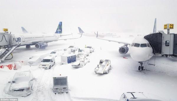 Nước Mỹ tê cứng trong 'bom bão tuyết': Người chết cóng, cá mập sốc nhiệt và hàng loạt ô tô 'biến mất' - Ảnh 8.