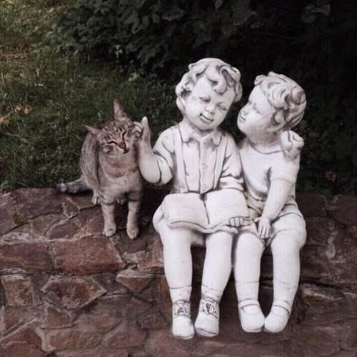 Ảnh: Cười ngất trước những khoảnh khắc siêu hài hước của mèo cưng - Ảnh 12.