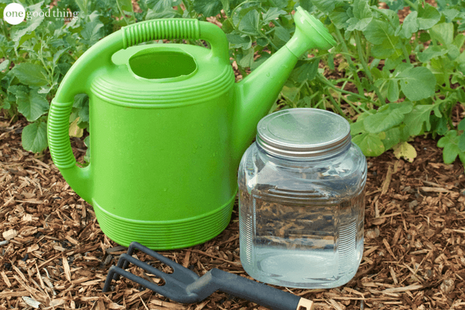 Hướng dẫn cách tự làm phân bón cho cây trồng vừa rẻ vừa an toàn cho khu vườn của bạn - Ảnh 1.