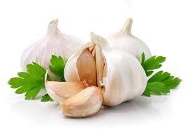 Thực phẩm nào giúp bạn tăng cường hệ miễn dịch trong mùa cúm? - Ảnh 1.