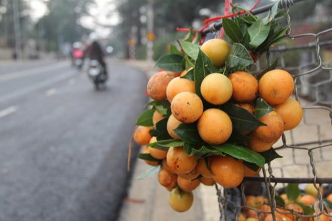 Ai đổ vỏ chứ người Việt Nam thì không: Những bộ phận trái cây tưởng bỏ được nhưng ăn ngon hết biết - Ảnh 12.
