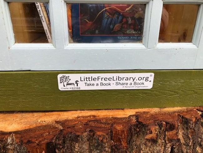 Hi sinh cây cổ thụ trăm tuổi cạnh nhà, người phụ nữ xây dựng thành một thư viện đầu tiên cho cả khu dân cư - Ảnh 12.