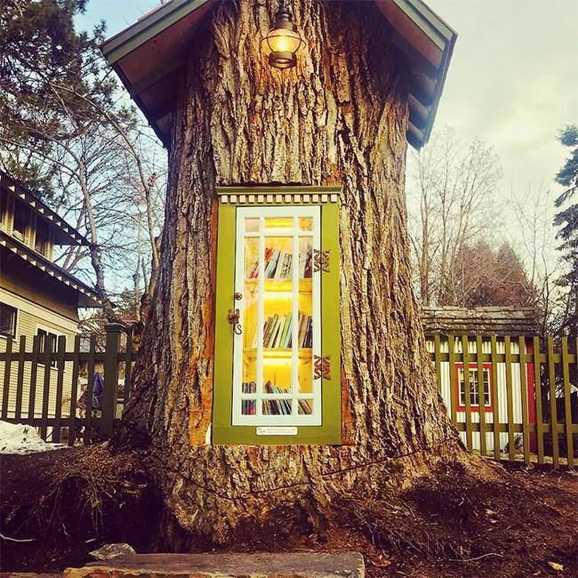 Hi sinh cây cổ thụ trăm tuổi cạnh nhà, người phụ nữ xây dựng thành một thư viện đầu tiên cho cả khu dân cư - Ảnh 3.