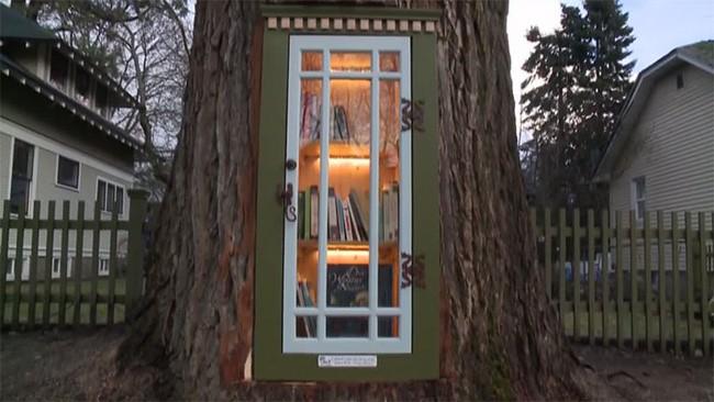 Hi sinh cây cổ thụ trăm tuổi cạnh nhà, người phụ nữ xây dựng thành một thư viện đầu tiên cho cả khu dân cư - Ảnh 5.