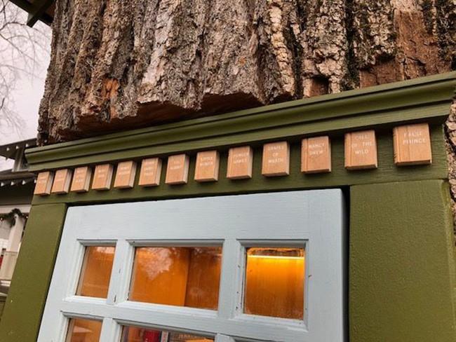 Hi sinh cây cổ thụ trăm tuổi cạnh nhà, người phụ nữ xây dựng thành một thư viện đầu tiên cho cả khu dân cư - Ảnh 9.
