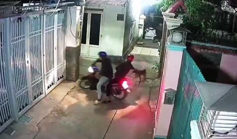 Cẩu tặc bắn chó, dọa bắn chủ nhà: Dọa rồi chạy luôn - Ảnh 1.
