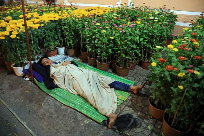 Tranh cãi cực gắt của dân mạng trước lời khuyên đừng đợi đến 30 mới mua hoa Tết - Ảnh 2.