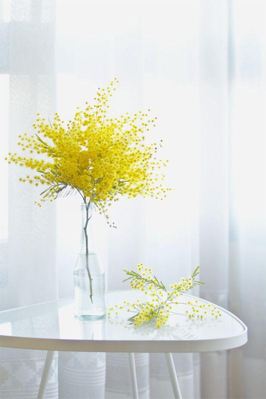 Ngoài đào và quất, những loại hoa này cũng nên được trang trí trong nhà bạn cho Tết thêm đầm ấm sum vầy - Ảnh 11.
