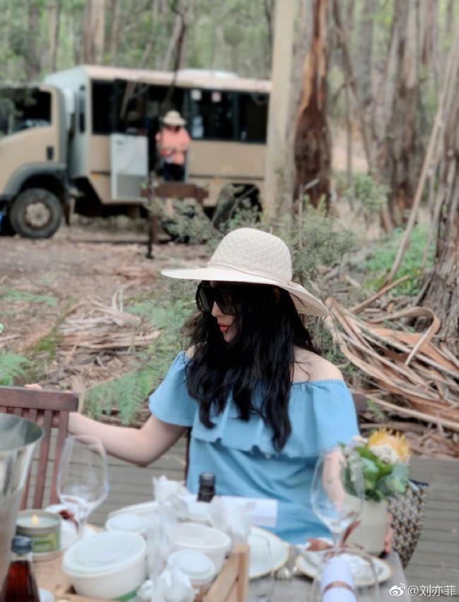 Nhìn ảnh Lưu Diệc Phi đi du lịch cùng gia đình, cư dân mạng hiểu tại sao cô tự nhận xấu nhất nhà  - Ảnh 3.