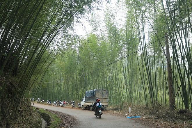 Trao quà Tết tận tay người dân nghèo huyện Bảo Lạc, Cao Bằng - Ảnh 3.