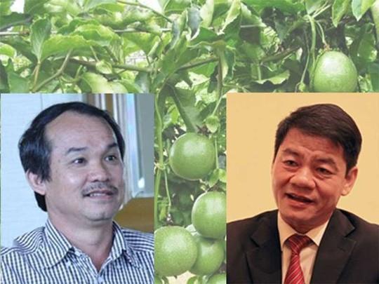 Chuyện về các tỉ phú đôla người Việt ngày đầu năm - Ảnh 1.