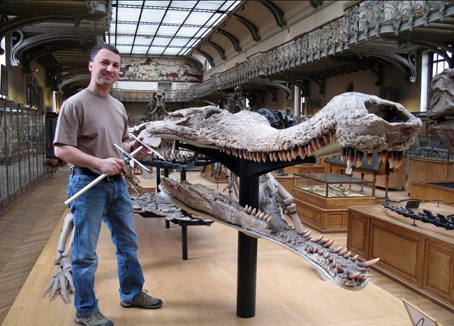 Những sự thật bất ngờ và thú vị về loài cá sấu - Ảnh 1.