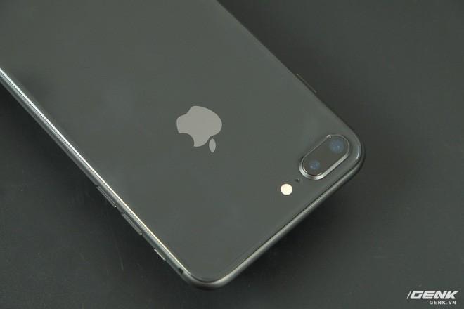 Điện thoại gaming nhan nhản nhưng game thủ vẫn dùng iPhone 8 Plus để thi đấu chuyên nghiệp - Ảnh 4.