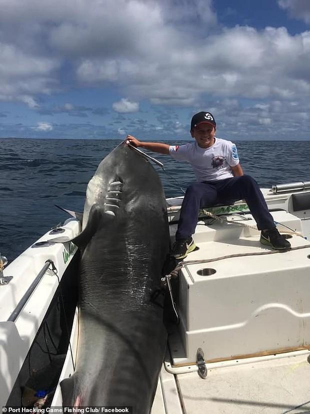 Cậu bé 8 tuổi bất ngờ câu được cá mập hổ nặng 314 kg, dự đoán phá cả kỷ lục thế giới cách đây 22 năm - Ảnh 2.