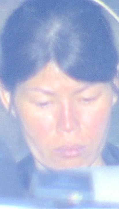 3 người Việt Nam bị bắt vì mang lậu thịt chó vào Nhật Bản - Ảnh 1.