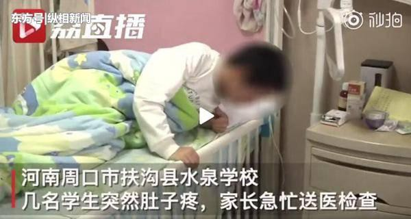 Thầy giáo quát học sinh ăn chỗ rác đó đi, 4 học sinh nhập viện vì đau bụng - Ảnh 1.