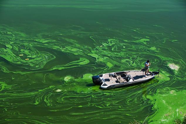 Nước bẩn giết nhiều người hơn cả chiến tranh - Ảnh 4.