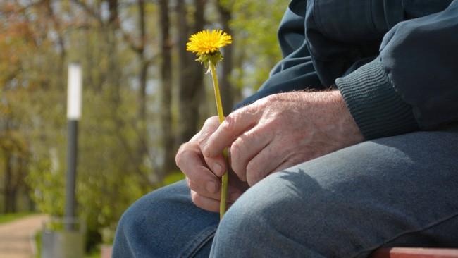 Về thăm cha già hấp hối, con trai hỏi sao chưa chịu chết đi? khiến ông uống thuốc sâu tự tử - Ảnh 2.