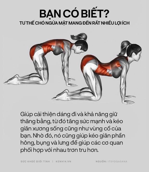 Bạn có biết: 10 tư thế yoga đơn giản sau đây đều có tác dụng rất tốt cho sức khoẻ và tinh thần - Ảnh 6.