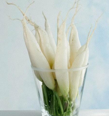 Củ cải trắng - thuốc quý cho sức khỏe mùa đông - Ảnh 3.