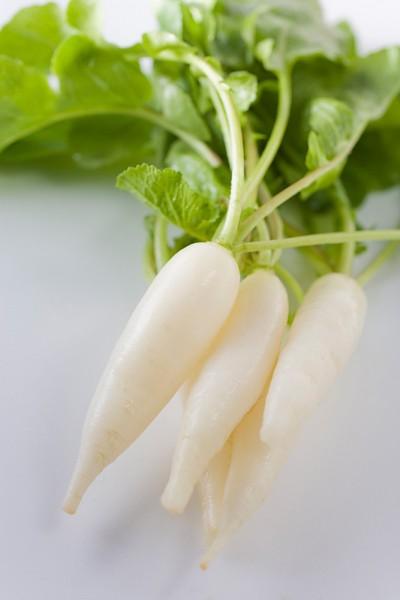 Củ cải trắng - thuốc quý cho sức khỏe mùa đông - Ảnh 4.