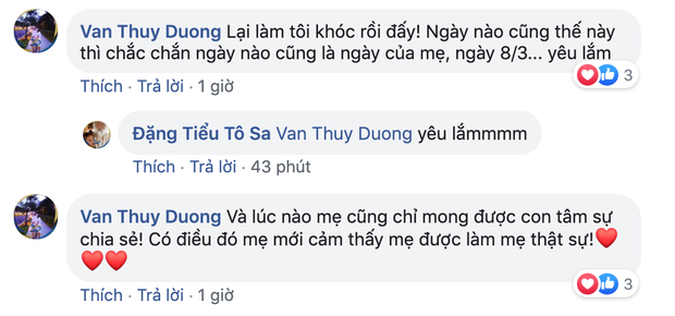 Mẹ bỗng mang bầu 2 em trai sinh đôi, Tô Sa - cháu ngoại cố nhà giáo Văn Như Cương đáp trả sắc sảo khi bị hỏi: Có xấu hổ không? - Ảnh 8.